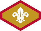 Chief Scout's Gold Award
